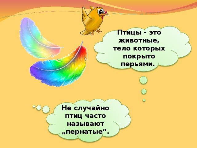 """Птицы - это животные, тело которых покрыто перьями. Неслучайно птиц часто называют """"пернатые""""."""