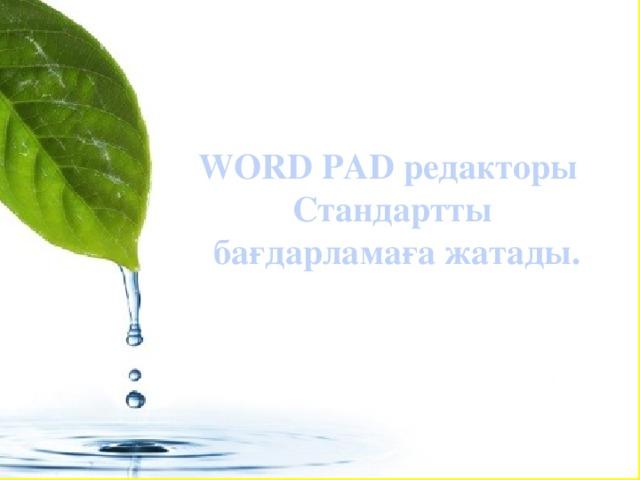 WORD PAD редакторы Стандартты бағдарламаға жатады.