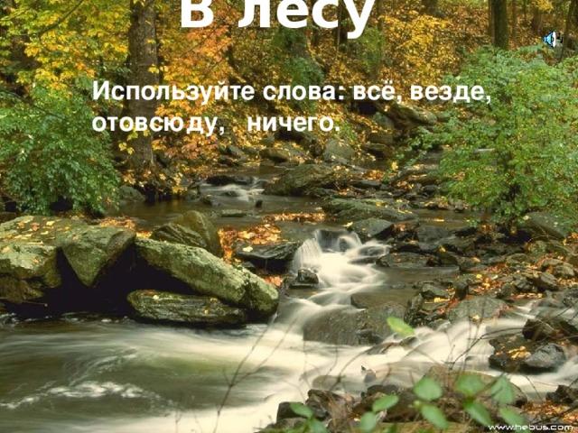 В лесу      Используйте слова: всё, везде,  отовсюду, ничего.