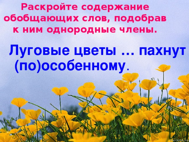 Раскройте содержание обобщающих слов, подобрав к ним однородные члены.  Луговые цветы … пахнут (по)особенному .