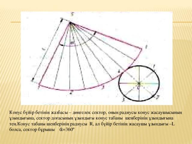 Конус бүйір бетінің жазбасы – дөңгелек сектор, оның радиусы конус жасаушысының ұзындығына, сектор доғасының ұзындығы конус табаны шеңберінің ұзындығына тең.Конус табаны шеңберінің радиусы R, ал бүйір бетінің жасаушы ұзындығы –L болса, сектор бұрышы ά=360º
