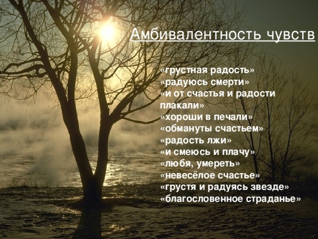 Амбивалентность чувств «грустная радость» «радуюсь смерти» «и от счастья и радости плакали» «хороши в печали» «обмануты счастьем» «радость лжи» «и смеюсь и плачу» «любя, умереть» «невесёлое счастье» «грустя и радуясь звезде» «благословенное страданье»