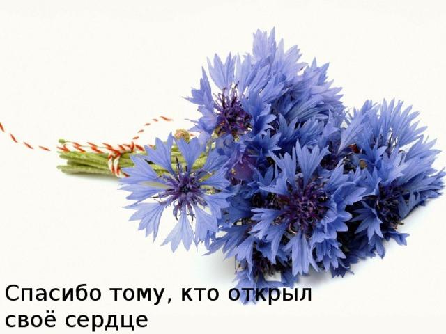 Спасибо тому, кто открыл своё сердце Для тихой печали, любви и добра.
