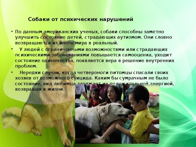 Собаки от психических нарушений