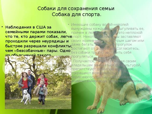 Собаки для сохранения семьи  Собака для спорта.