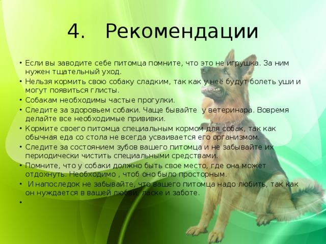4. Рекомендации
