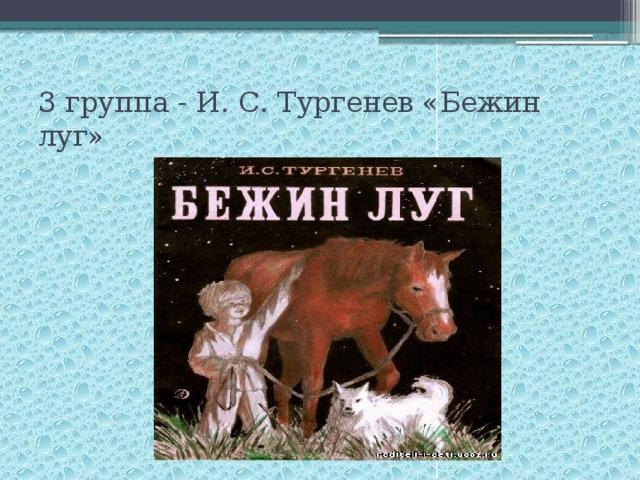 3 группа - И. С. Тургенев «Бежин луг»