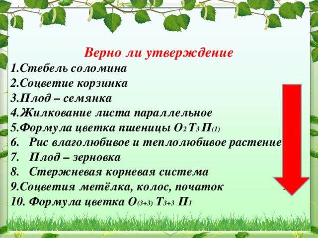 Верно ли утверждение Стебель соломина Соцветие корзинка Плод – семянка Жилкование листа параллельное Формула цветка пшеницы О 2 Т 3 П (1) 6. Рис влаголюбивое и теплолюбивое растение 7. Плод – зерновка 8. Стержневая корневая система Соцветия метёлка, колос, початок 10. Формула цветка О (3+3) Т 3+3 П 1 +  - - + + + + - 9. + 10. -