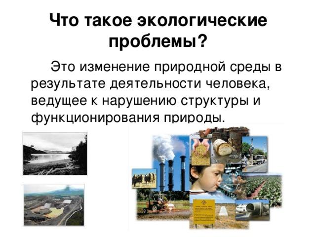 Что такое экологические проблемы?   Это изменение природной среды в результате деятельности человека, ведущее к нарушению структуры и функционирования природы.