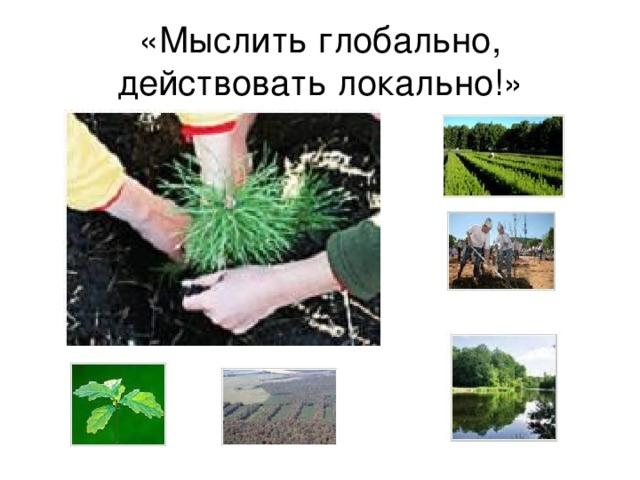 «Мыслить глобально, действовать локально!»