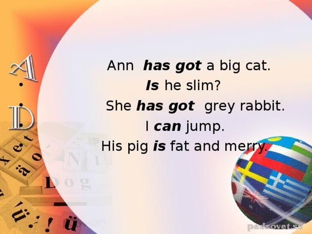 Ann has got a big cat.