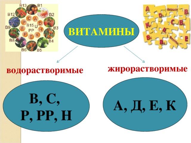 ВИТАМИНЫ жирорастворимые водорастворимые А, Д, Е, К В, С, Р, РР, Н