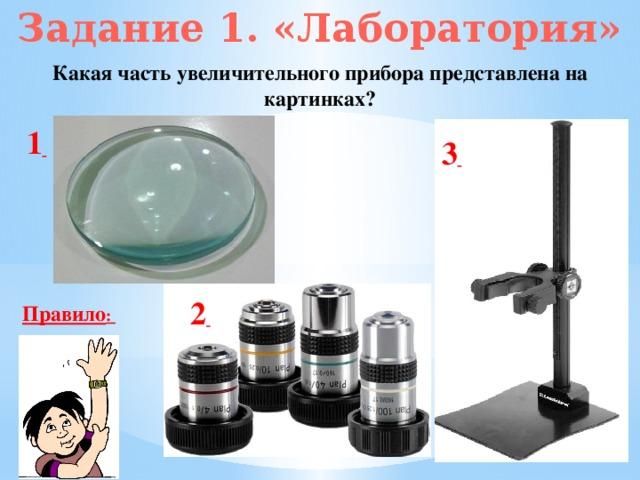 Задание 1. «Лаборатория» Какая часть увеличительного прибора представлена на картинках? 1  3  2  Правило :