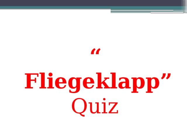 """"""" Fliegeklapp"""" Quiz"""