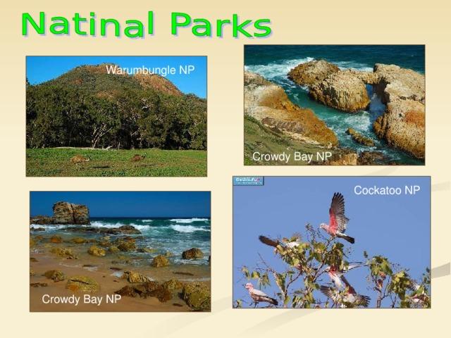 Warumbungle NP Crowdy Bay NP Cockatoo NP Crowdy Bay NP