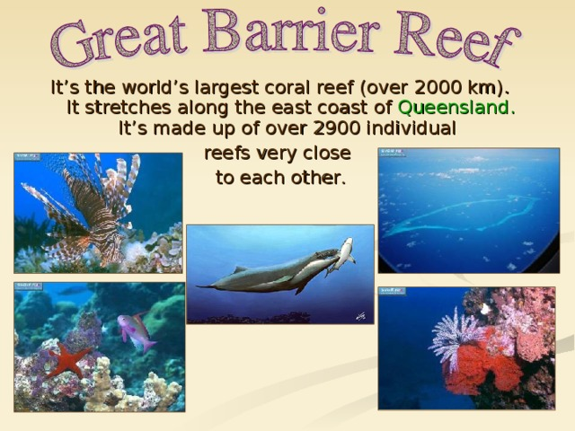 It's the world's largest coral reef (over 2000 km). It stretches along the east coast of Queensland. It's made up of over 2900 individual reefs very close to each other .