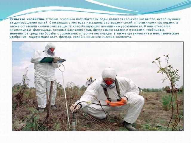 Сельское хозяйство. Вторым основным потребителем воды является сельское хозяйство, использующее ее для орошения полей. Стекающая с них вода насыщена растворами солей и почвенными частицами, а также остатками химических веществ, способствующих повышению урожайности. К ним относятся инсектициды; фунгициды, которые распыляют над фруктовыми садами и посевами; гербициды, знаменитое средство борьбы с сорняками; и прочие пестициды, а также органические и неорганические удобрения, содержащие азот, фосфор, калий и иные химические элементы.