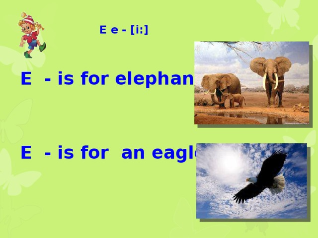 E e - [i:]  E - is for elephants   E - is for an eagle