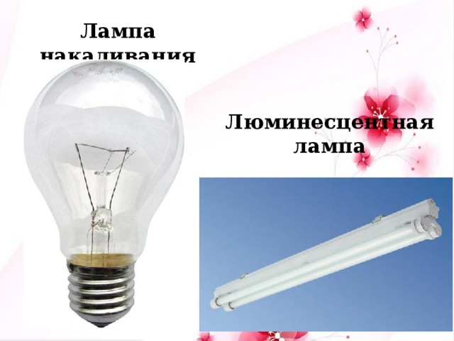 Лампа накаливания Люминесцентная лампа