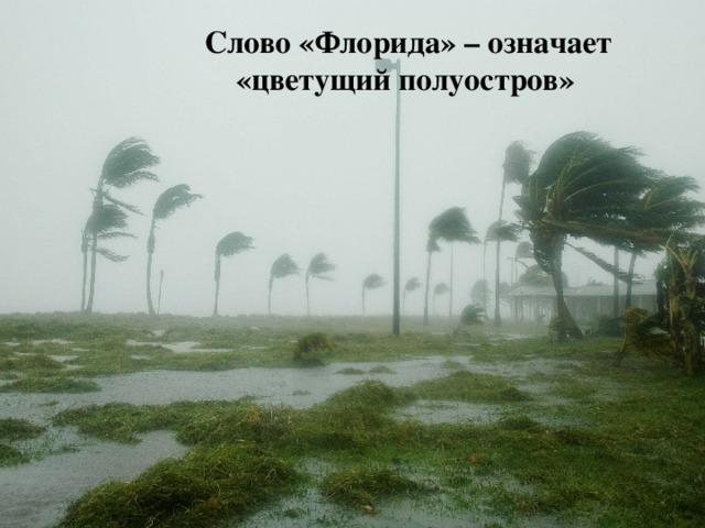 Слово «Флорида» – означает «цветущий полуостров»