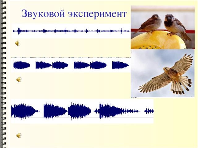 Звуковой эксперимент