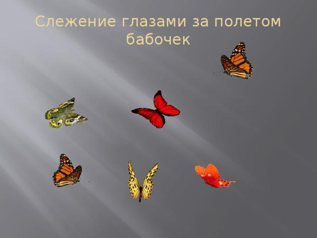 Слежение глазами за полетом бабочек
