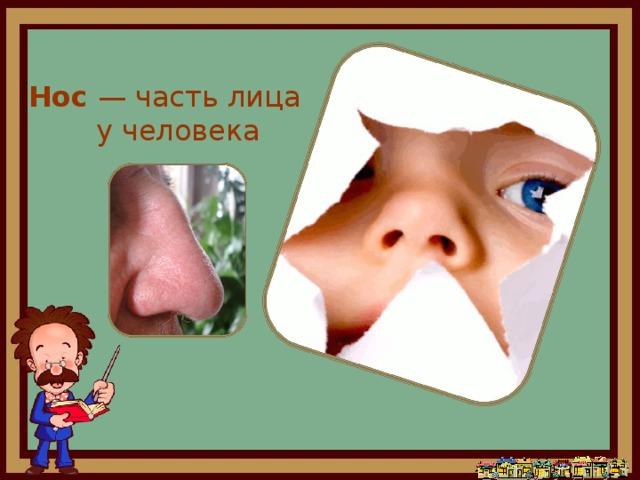 зачем человеку нос картинки которого воплощают все
