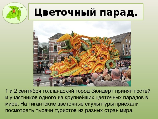 Цветочный парад. 1 и 2 сентября голландский город Зюндерт принял гостей и участников одного из крупнейших цветочных парадов в мире. На гигантские цветочные скульптуры приехали посмотреть тысячи туристов из разных стран мира.