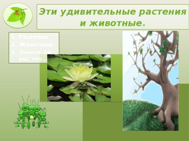 Эти удивительные растения и животные .