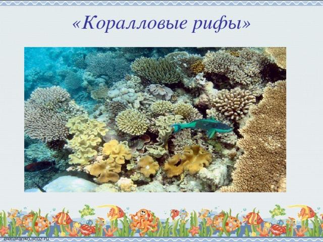 «Коралловые рифы»