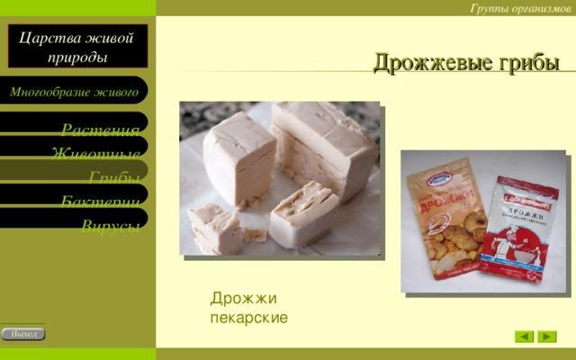 Дрожжевые грибы Дрожжи пекарские