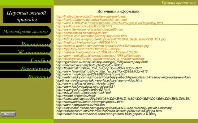 Источники информации http://findfood.ru/product/morskie-vodorosli-fukus  http://ltravi.ru/organy-dyhaniya/kukushkin-len.html  http://www.1000listnik.ru/lekarstvennie-travi/15/257-plaun-bulavovidnyj.html  http://yadflora.narod.ru/yadflora/36.html  http://www.life-nature.ru/articles/4/article80.htm  http://sazhaemsad.ru/catalog/el.html  http://lizgard.com.ua/rasteniya/rozy/shipovnik.html  http://fitozdorovie.ru/wp-content/uploads/2012/01/0_5e3b_ab6c7999_XL1.jpg  http://lj-editors.livejournal.com/462500.html  http://animals-world.ru/wp-content/uploads/2014/02/infuzoriya.jpg  http://topy-topy.ru/2013/08/10/otdyx-u-morya/  http://ivanstor.livejournal.com/17634.html?thread=100834  http://www.medicalj.ru/diseases/infectious/1086-difillobotrioz  http://detskiychas.ru/obo_vsyom/rasskazy_o_prirode/osminog/  http://ogivotnich.ru/mollyuski/bryuhonogie_mollyuski/rapany.html  http://macroid.ru/showphoto.php?photo=70362  http://floranimal.ru/show_foto_his.php?foi=2967&flidgr=3370  http://www.floranimal.ru/show_foto_his.php?foi=2598&flidgr=813  http://www.m-sokolov.ru/2014/09/06/natrix-natrix/  http://webmandry.com/raznoe/priroda/belyy-lebedshipun-ptitsa-iz-krasnoy-knigi-opisanie-s-foto-i-kartinkami-interesnye-fakty-pro-lebedya-shipuna-video.html  http://www.angling.ru/severnyiy-olen.html  http://www.kladovayalesa.ru/archives/981  http://supercook.ru/griby/griby-62.html  http://edu.altami.ru/research/mold.html  http://recept.photo/drozhzhi/  http://luboznatelnaya.ru/2012/03/05/%D0%B4%D1%80%D0%BE%D0%B6%D0%B6%D0%B8/  http://oshoworld.ru/forum/viewtopic.php?t=4893  http://www.happydoctor.ru/info/801  http://simptomer.ru/bolezni/organy-dykhaniya/630-tuberkuleznyy-plevrit-simptomy  http://zarubezhom.info/zdorove/izobreten-antitelo-protiv-virusa-grippa.html  http://vrachfree.ru/ru/bolezni-zabolevaniya/item/1936-gepatit-e-u-detej