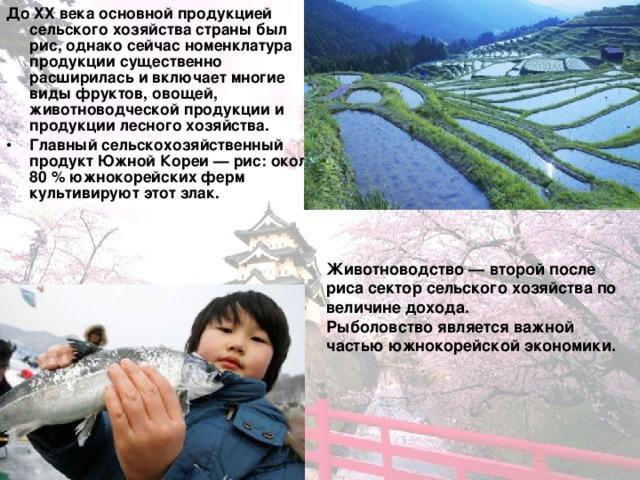 До XX века основной продукцией сельского хозяйства страны был рис, однако сейчас номенклатура продукции существенно расширилась и включает многие виды фруктов, овощей, животноводческой продукции и продукции лесного хозяйства. Главный сельскохозяйственный продукт Южной Кореи — рис: около 80 % южнокорейских ферм культивируют этот злак.  Животноводство — второй после риса сектор сельского хозяйства по величине дохода. Рыболовство является важной частью южнокорейской экономики.