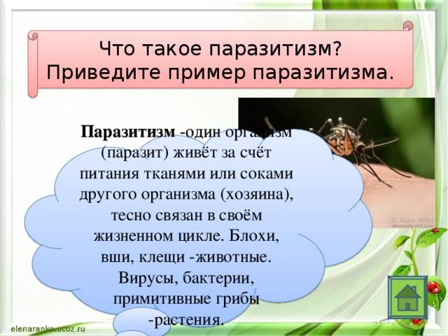 Что такое паразитизм? Приведите пример паразитизма. Паразитизм -один организм (паразит) живёт за счёт питания тканями или соками другого организма (хозяина), тесно связан в своём жизненном цикле. Блохи, вши, клещи -животные. Вирусы, бактерии, примитивные грибы -растения.