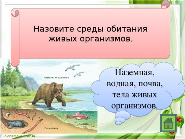 Назовите среды обитания живых организмов . Наземная, водная, почва, тела живых организмов.