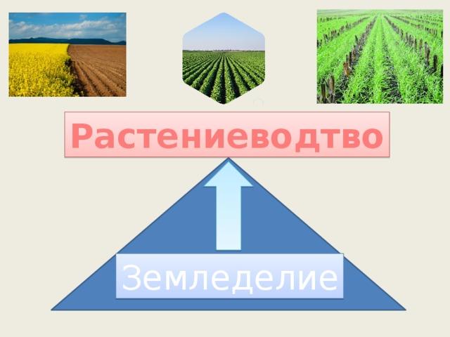 Растениеводтво Земледелие
