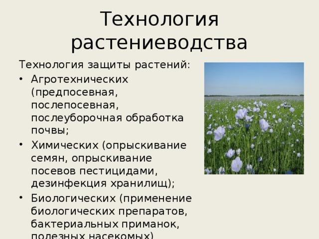 Технология растениеводства Технология защиты растений: