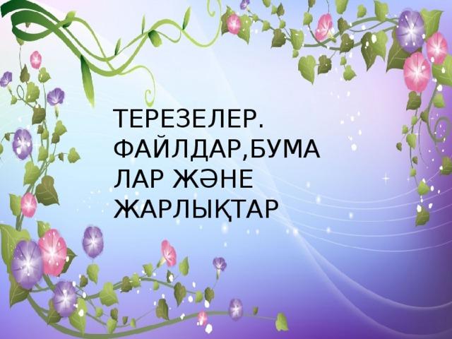 ТЕРЕЗЕЛЕР. ФАЙЛДАР,БУМАЛАР ЖӘНЕ ЖАРЛЫҚТАР