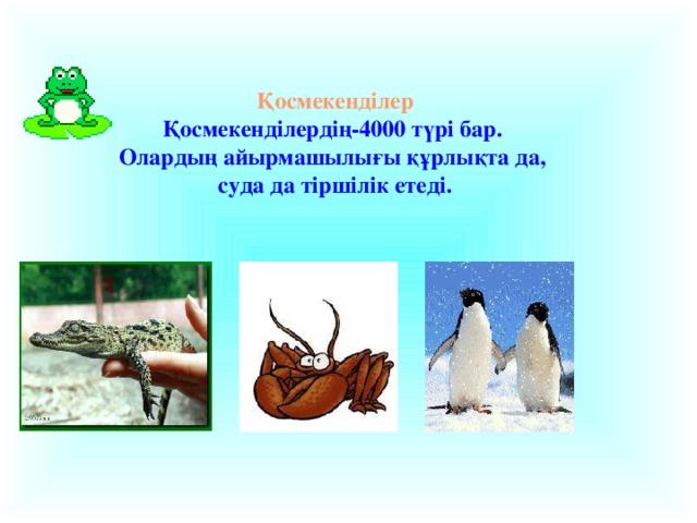 Қосмекенділер Қосмекенділердің-4000 түрі бар. Олардың айырмашылығы құрлықта да, суда да тіршілік етеді.