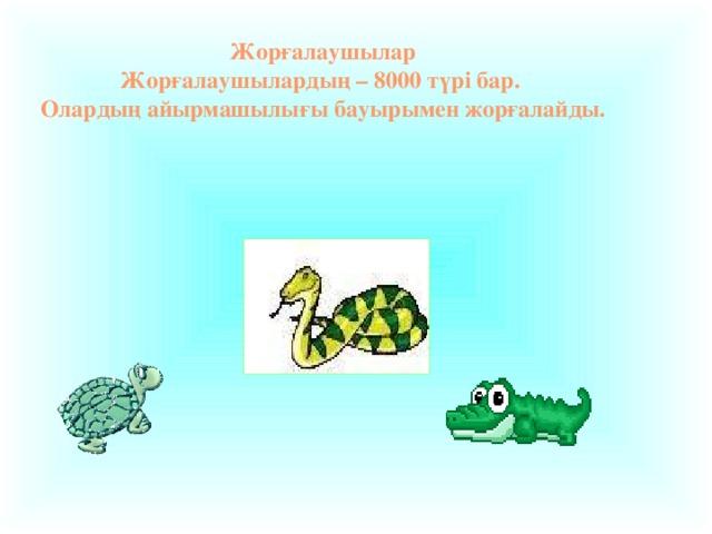 Жорғалаушылар Жорғалаушылардың – 8000 түрі бар. Олардың айырмашылығы бауырымен жорғалайды.