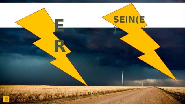 SEIN(E) ER