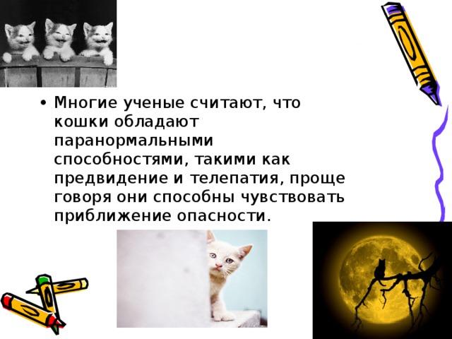 Многие ученые считают, что кошки обладают паранормальными способностями, такими как предвидение и телепатия, проще говоря они способны чувствовать приближение опасности.