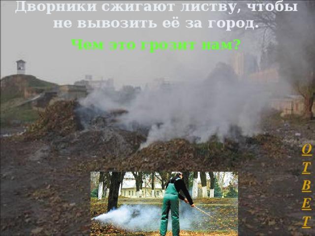 Дворники сжигают листву, чтобы не вывозить её за город.   Чем это грозит нам?  ОТВЕТ Л.А. Гладкова
