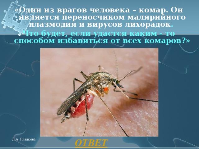 «Один из врагов человека – комар. Он является переносчиком малярийного плазмодия и вирусов лихорадок . Что будет, если удастся каким - то способом избавиться от всех комаров?»  ОТВЕТ Л.А. Гладкова