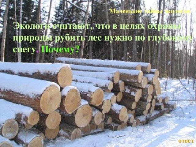 Маленькие тайны экологов Экологи считают, что в целях охраны природы рубить лес нужно по глубокому снегу .  Почему?  Л.А. Гладкова ответ