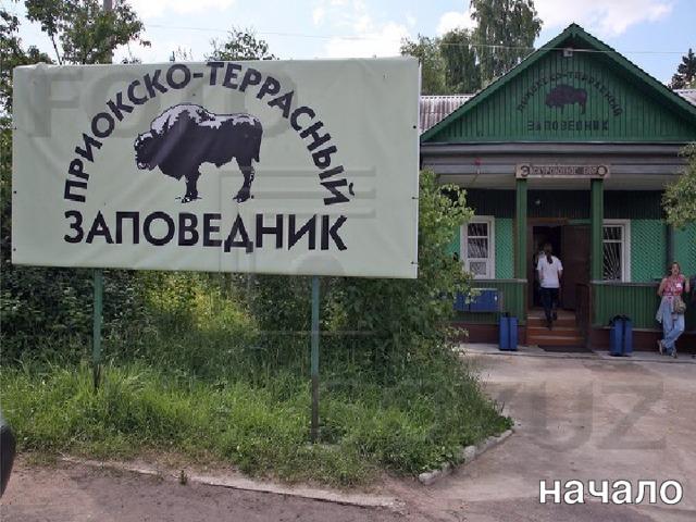 Л.А. Гладкова