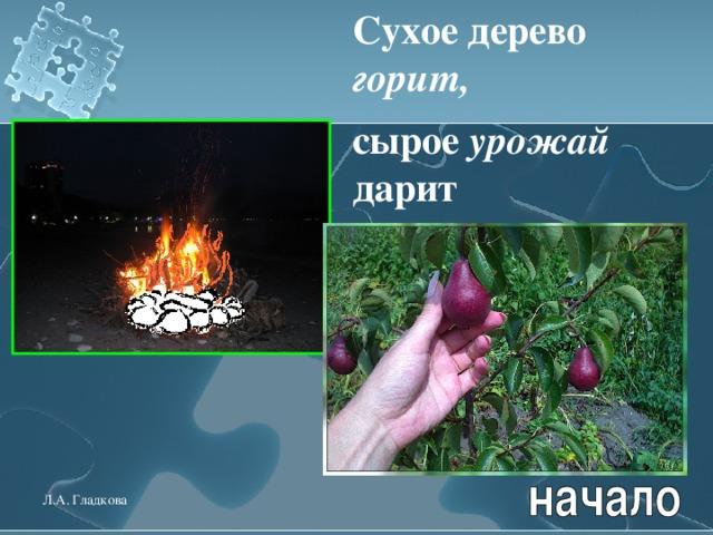 Сухое дерево горит,  сырое урожай дарит  Л.А. Гладкова