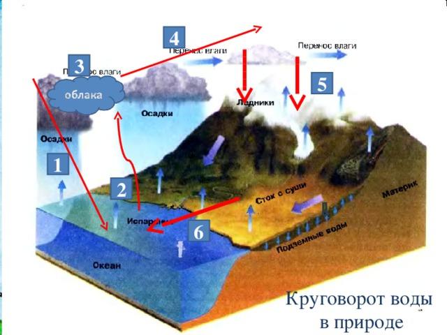 4 3 5 1 2 6 Круговорот воды  в природе