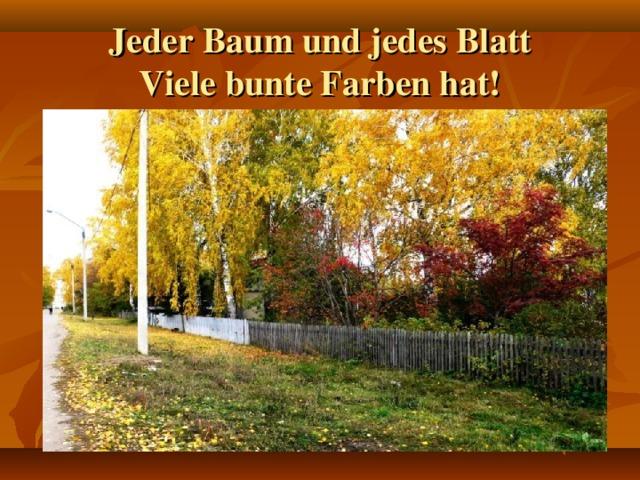 Jeder Baum und jedes Blatt  Viele bunte Farben hat!