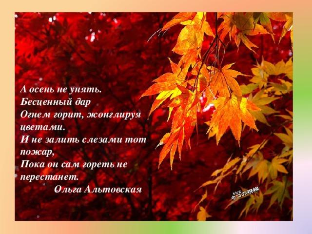 А осень не унять. Бесценный дар  Огнем горит, жонглируя цветами.  И не залить слезами тот пожар,  Пока он сам гореть не перестанет.  Ольга Альтовская